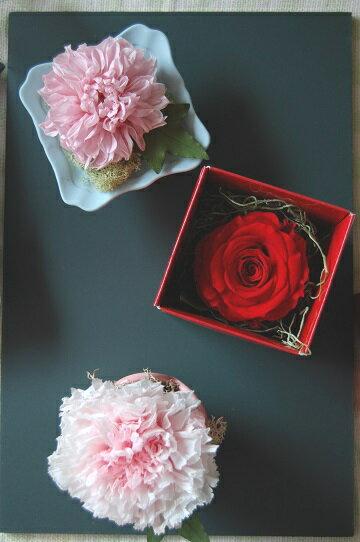 フルーレット・カーネーション*母の日定番のカーネーション。感謝の花言葉のダリア。人気の高いバラ。母の日にはどのタイプを贈りますか?/母の日/プリザーブドフラワー/花電報/ギフト/誕生日/イベント