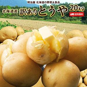 じゃがいも 送料無料 とうや 20kg 訳あり 北海道産 ニセコ産 低農薬栽培 サイズ混み ジャガイモ 芋 キタアカリ とうや わけあり ワケアリ 訳とう