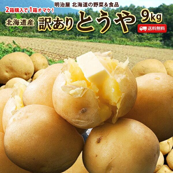 訳あり じゃがいも 9kg とうや 送料無料 北海道産 ニセコ産 低農薬栽培 B品 ジャガイモ 芋 トウヤ わけあり ワケアリ 野菜 訳とうや