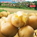 訳あり じゃがいも 送料無料 9kg とうや 北海道産 ニセコ産 低農薬栽培 B品 ジャガイモ 芋 トウヤ わけあり ワケアリ …