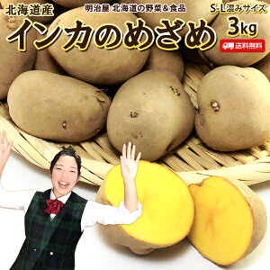 いんかのめざめ 送料無料 3kg 北海道羊蹄山麓産 じゃがいも ジャガイモ インカのめざめ 芋 送料込み ギフト 野菜ギフト