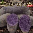 じゃがいも 送料無料 シャドークイーン 5kg 北海道産 ジャガイモ 芋