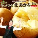 じゃがいも 送料無料 北あかり 9kg 北海道産 M〜Lサイズ 野菜ギフト 野菜 お歳暮 ジャガイモ 芋 キタアカリ きたあか…