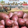 \11月限定ご奉仕価格♪/じゃがいも送料無料レッドムーン9kg北海道産ジャガイモ芋