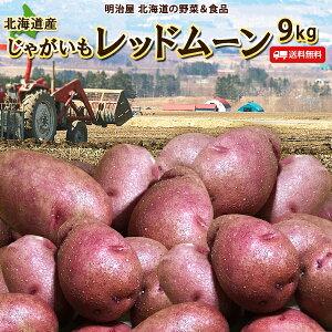 じゃがいも 送料無料 レッドムーン 9kg 北海道産 ジャガイモ 芋