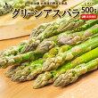 【送料無料】北海道ニセコ町グリーンアスパラLサイズ500g