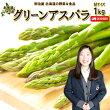 【送料無料】北海道ニセコ町グリーンアスパラMサイズ1kg