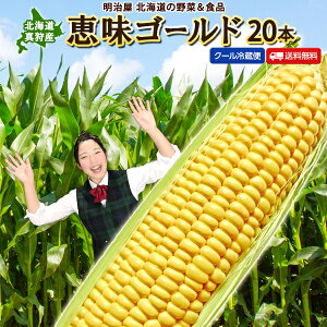 とうもろこし 送料無料 恵味ゴールド L-LLサイズ 20本 朝採り 北海道 真狩産 生で食べれる! 冷蔵便 スイートコーン トウモロコシ とうきび 生食OK!