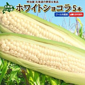 とうもろこし 送料無料 ホワイトショコラ 5本 Lサイズ 生で食べれる! 北海道 ニセコ産 朝採り 低農薬栽培 スイートコーン 白 とうきび 生食 フルーツとうもろこし 冷蔵便