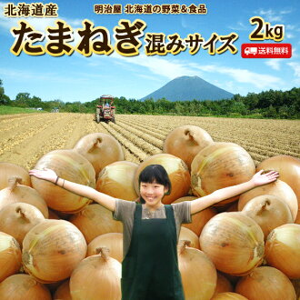 Time-limited onion 3kgS-L from Hokkaido is crowded; a size onion onion