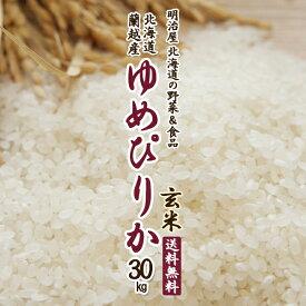 ゆめぴりか 送料無料 玄米 30kg (10kg×3袋) 令和元年 新米 北海道産 蘭越産 送料込み ユメピリカ 北海道米