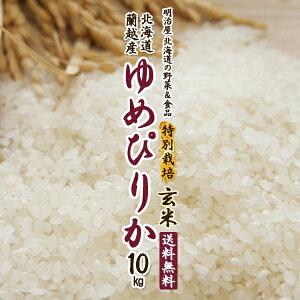 【特別栽培米】ゆめぴりか 玄米 送料無料 10kg (5kg×2袋) 令和3年 新米 北海道産 蘭越産 送料込み ユメピリカ 北海道米【福岡農園】