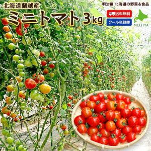 ミニトマト 送料無料 3kg アイコ・キャロルスターのいずれかよりお届けします♪ 北海道 蘭越産 野菜ギフト とまと 冷蔵便