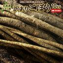 ごぼう 送料無料 10kg 北海道ルスツ産 土付き 訳あり 混みサイズ 送料込み ごぼう茶 国産 わけあり ワケアリ ゴボー …