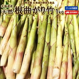 たけのこ 送料無料 根曲がり竹 1kg 生 北海道産 天然 春の山菜 タケノコ たけのこ 冷蔵便 筍 御中元