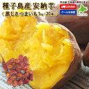 送料無料 さつまいも 1kg(20個) すぐに食べれる♪蒸し芋 【冷凍】 安納芋 蜜芋 芋 スイーツ 種子島産 冷やし芋 おう…
