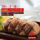 【送料無料】選べるお試しハンバーグ 2個入 近江牛100%ハンバーグ(オリジナルソース)/ 近江牛ブレンド明治亭ハンバ…
