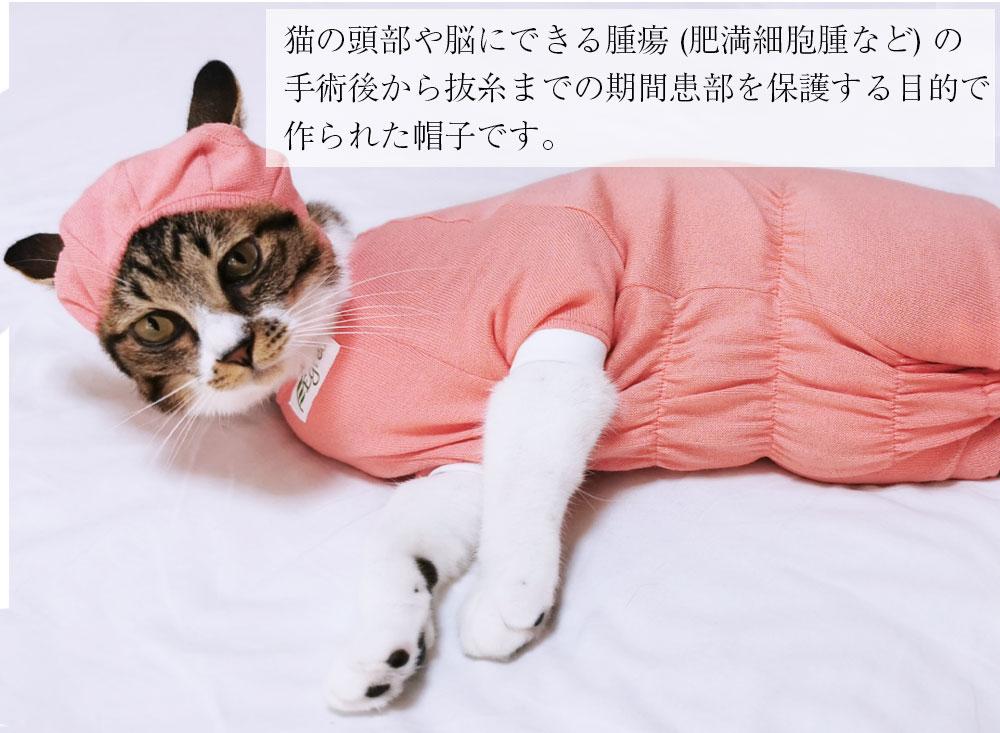 猫の帽子。頭部の手術後や傷の保護などに/ペット服/キャットウェア