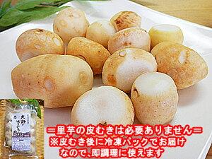 冷凍 皮むき済みタイプ 里イモ 300g×15袋入福井県大野市上庄産 里芋 さといもを皮むき後里いも サトイモ 洗い子 あらいこ 洗いこ上庄里芋 上庄里芋 上庄さといも 冷凍品ポイント10倍 10倍ポイ