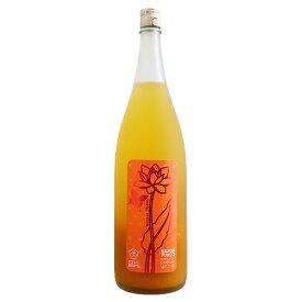 フルフル 完熟マンゴー梅酒 1800ml リキュール