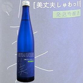 ≪発泡性の日本酒≫ 美丈夫 しゅわっ 吟醸酒 500ml :びじょうふ