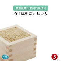無農薬無化学肥料栽培米石川県加賀産コシヒカリ5kg
