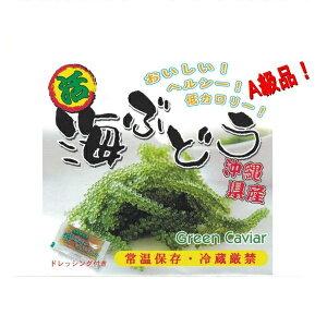 海ぶどう 送料無料 沖縄 久米島産海ぶどう (500g) 海洋深層水 で有名な久米島産海ぶどう100% お土産 おすすめ
