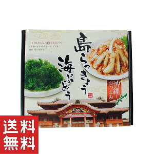 島らっきょう 塩漬け 食品 ポイント消化 沖縄 おつまみ お土産 島らっきょう30g・海ぶどう 20g×1個