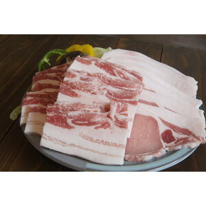 あぐー豚 幻のアグー豚 ギフト 沖縄 お土産 ja沖縄あぐー豚三昧セット お肉屋本舗