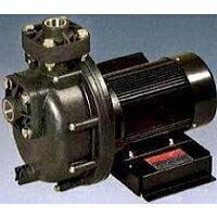 自吸式ヒューガルポンプ(樹脂製・海水用)三相電機製25PSPZ-2031B(60HZ)単相100V