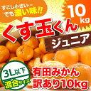 みかん 10kg 送料無料 訳あり 【送料無料】3L以下サイズのくす玉くんジュニア【大玉みかんよりワンサイズ小さいサイズ…
