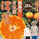 訳あり 有田 ポンカン 20kg みかん科 柑橘類 20.0kg ぽんかん 産地直送 送料無料(北海道・沖縄・一部離島+500円) 和…