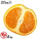 【訳あり】 清見 オレンジ 訳あり 清見オレンジ 4.0kg 送料無 送料無料 果物 くだもの フルーツ 訳あり 送料無料 和歌…
