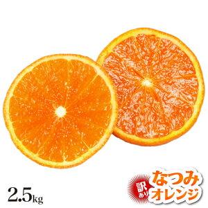 【訳あり】 なつみオレンジ 2.5kg 訳有り なつみ みかん 2.5kg 産地直送 訳あり 和歌山 みかん 春 夏 オレンジ なつみ 果物 フルーツ 有田市 有田みかん 箱買い 家庭用 2.5キロ 箱 買い おいしい