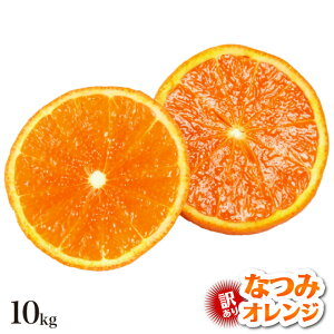 【訳あり】 なつみオレンジ 10.0kg 訳有り なつみ みかん 10.0kg 産地直送 訳あり 和歌山 みかん 春 夏 オレンジ なつみ 果物 フルーツ 有田市 有田みかん 箱買い 家庭用 送料無料 送料込み 10キロ