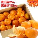 【訳あり】 みかん 10kg 送料無料 訳あり 【送料無料】3L以下サイズのくす玉くんジュニア【大玉みかんよりワンサイズ…