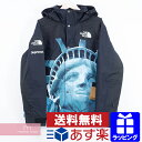 Supreme×THE NORTH FACE 2019AW Statue of Liberty Mountain Jacket シュプリーム×ノースフェイス ス...