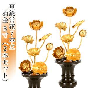 【4/16までP3倍】真鍮常花 7本立 8寸 消金(2本セット・1対)【供え物】【造花】【モダン仏具】【仏壇】【8号】【じょうか】