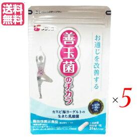 カスピ海ヨーグルトの乳酸菌サプリ フジッコ 善玉菌のチカラ 31粒 5袋セット
