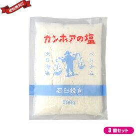 塩 天然塩 非加熱 カンホアの塩 石臼挽き 500g 3袋セット