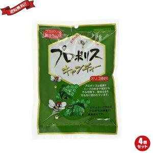 プロポリス キャンディー のど飴 森川健康堂 プロポリスキャンディー 100g 4袋セット