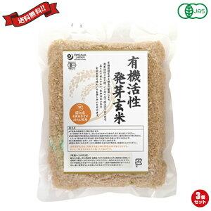 【ポイント6倍】最大33倍!発芽玄米 玄米 国産 オーサワ 国内産有機活性発芽玄米 500g 3個セット
