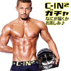 【C-IN2】シーインツー ガチャガチャ 何が届くかお楽しみ