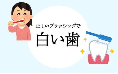 Be89歯磨き粉ホワイトニング医薬部外品薬用歯磨き【歯を白くするはみがき粉】口臭むし歯歯周炎予防日本製90g(ペースト)