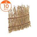 【竹篭】 小笹筏皿 中 10個入 1袋