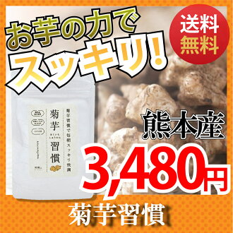 Flora Kumamoto product Jerusalem artichoke inulin supplement diet solution dietary fiber domestic production super food in the potato inulin dietary fiber bowels hearing a potato Jerusalem artichoke hearing Jerusalem artichoke supplement Jerusalem artich