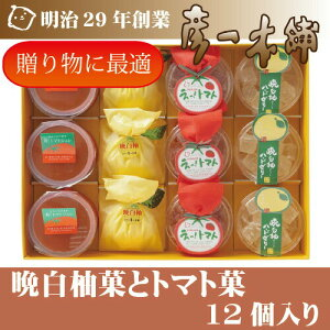 【晩白柚菓とトマト菓】12個入り 熊本名産の「晩白柚」と「はちべえトマト」を使用したお菓子をふんだんに詰めたセットです!スイーツ ゼリー お菓子 お取り寄せ 菓子折り お土産 お歳暮