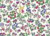 LIBERTY自由印刷·架子貸款布料<Nancy Animal>(南希動物)3286253SP-J15C自由布料