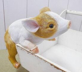 チアフルフレンズ こぶたのケビン ぶた ブタ 豚 pig 置物 小物 オブジェ