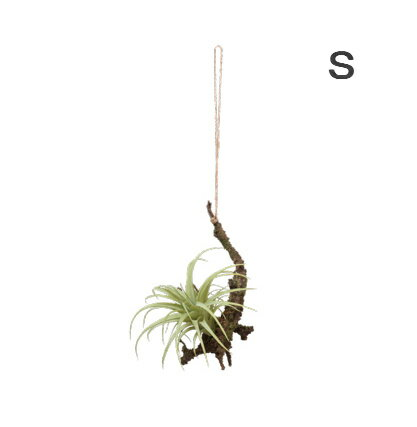 エアープランツ ハンギング エアプランツ S 造花 イミテーション 壁掛け 吊り下げ造花 インテリアグリーン 人工観葉植物 フェイクグリーン イミテーション 花 フラワー【インテリア】素材 パーツ インテリアグリーン 観葉植物